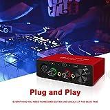 Audio Interface Audio Interface for PC USB Audio