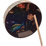 """Remo 12"""" Ocean Drum, Fish Design Head"""