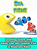 Learning Colors with Smile icon and Colorful Fish in Undersea video