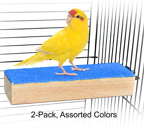 Spoiled Pet Bird Cage Perch Stand - Beak and Foot Grinding Platform - All Natural Materials - Parakeets, Cockatiels, Canaries, Finches, Conures, Lories, and Budgies - Hamsters and Gerbils - 2 Pack
