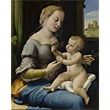 'Raphael The Madonna of the Pinks (La Madonna dei Garofani) ' oil painting, 16 x 20 inch / 41 x 51 cm ,printed on high quality polyster Canvas ,this Vivid Art Decorative Canvas Prints is perfectly suitalbe for Kitchen artwork and Home decoration and Gifts