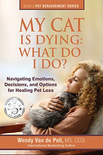 My Cat Is Dying: What Do I Do? Navigating Emotions, Decisions, and Options for Healing Pet Loss