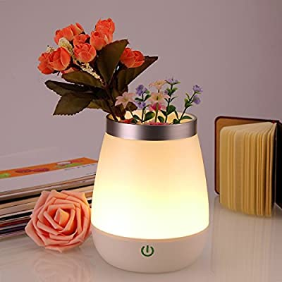 Rechargeable LED Nursery Night Light Dimmable Bedside Table Lamp Home Decorative Vase Mood Lights for Baby Room Bedroom Living Room Meeting Room and Office Decorations Pen Pot Holder