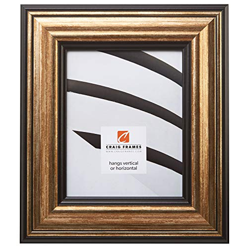 Craig Frames 21307201 24 by 36-Inch Picture Frame, Smooth Wrap Finish, 3.015-Inch Wide, Copper and Black