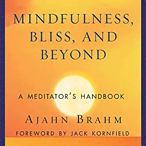 Mindfulness, Bliss, and Beyond Hörbuch