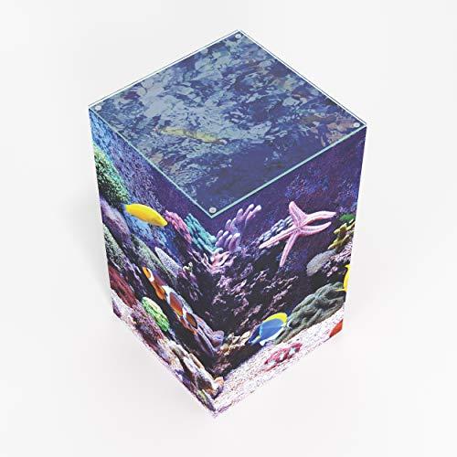 Coral Reef- Pedestal Side, End Table (W: 11.75