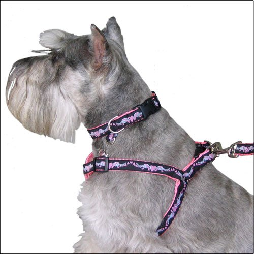 Heart Step In Dog Harness with Wings