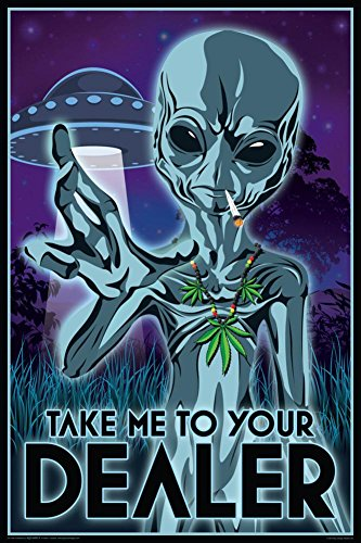 Aquarius Take Me to Your Dealer Poster, 24 by 36-Inch