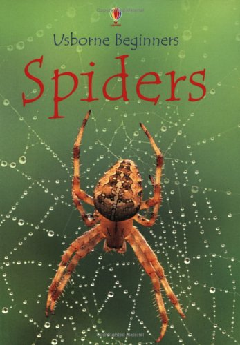 Spiders Broché – 27 septembre 2002 Rebecca Gilpin Usborne Publishing Ltd 0746045425 Anglais jeunesse import