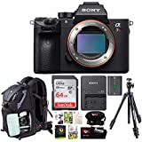 Sony Alpha a7RIII Mirrorless Camera w/ 64GB SD Card & Corel Suite Bundle