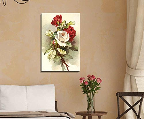 Flowers Illustration with Rose