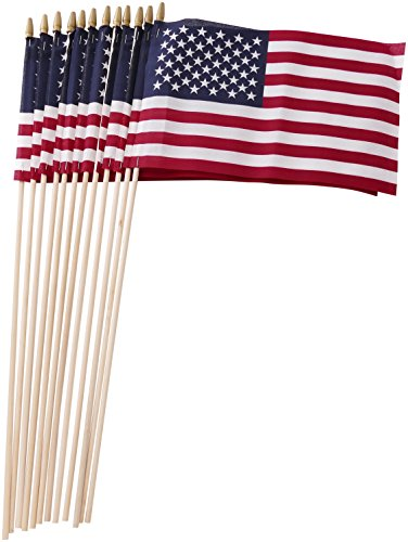Set of 12 Bulk American Flags: 8