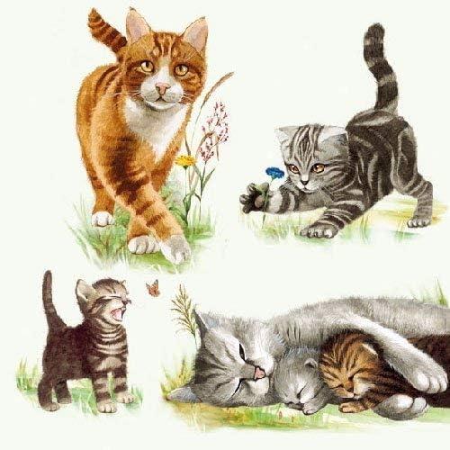 ambiente Servilleta Motivo: Cats Familia - Gatos Familia - 20 servilletas Por Paquete, 33x33 cm: Amazon.es: Hogar