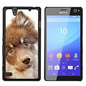 Retriever Mutt Mestizo perro Terrier- Metal de aluminio y de plástico duro Caja del teléfono - Negro - Sony Xperia C4 E5303 E5306 E5353