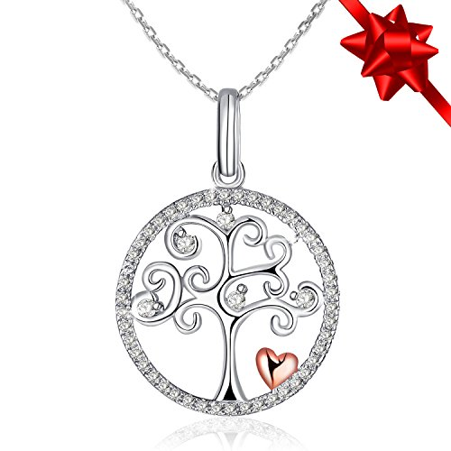 Necklace, Valentine's Day Gift with Exquisite Package 925 Sterling Silver Pendant Necklace J.Rosée Fine Jewelry for Women