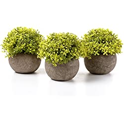 T4U Artificial Plastic Plants with Pots Mini Size for Home Office Wedding Decoration Chartreuse Pack of 3