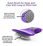 Pin Brush by Hertzko - For Dogs and Cats with