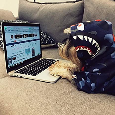 3c8da2fc Amazon.com : FidgetGear Shark Bape Pet Hoodie Dog Coat Winter Thick Cotton Warm  Clothes Puppy Jacket S : Pet Supplies