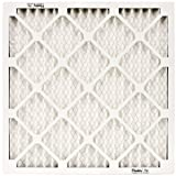 NaturalAire Standard Air Filter, MERV 8, 20 x 24, 1-inch, 12-Pack by Flanders