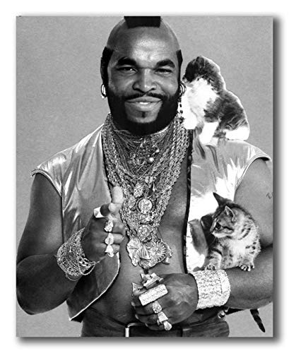 Globe Photos ArtPrints Mr T with Kittens - 8