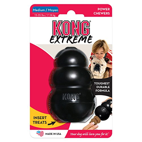 KONG EXTREME MEDIUM Rubber Chew Toy For Dogs - World's Best Dog Toy (K2)