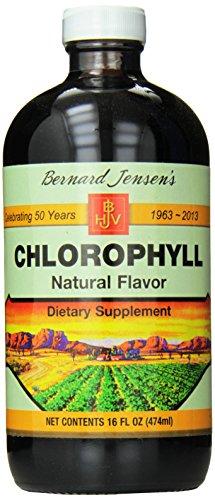 Bernard Jensen Chlorophyll Natural Liquid, 16 Fluid Ounce (Pack of 24) by Bernard Jensen