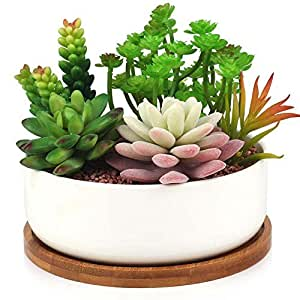 Succulent Planter, Digsky Modern White Ceramic Cactus Flower Pot Plant Pot with Bamboo Tray (Round)