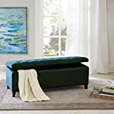 Madison Park Shandra Tufted Top Storage Bench, See below, Blue