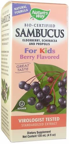 NATURE S WAY, Sambucus For Kids – 4 fl oz