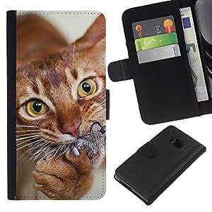 Orange American Shorthair Chausie Cat - la tarjeta de Crédito Slots PU Funda de cuero Monedero caso cubierta de piel HTC One M7
