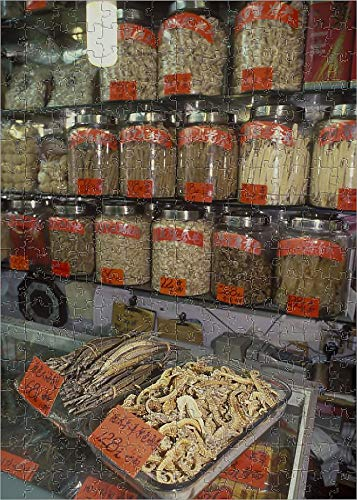252 Piece Puzzle of Dried Seahorses and Pipefish in Chinese Medicine Store ()