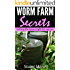 Worm Farm Secrets getting the basics right for success