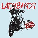 Shimmy Shimmy Dang! by Ladybirds