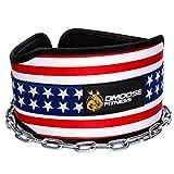 Kyпить Premium Dip Belt with Chain by DMoose Fitness (American) на Amazon.com