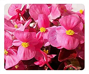 Begonia flower Beautiful oblong mouse pad by Cases & Mousepads by mcsharks