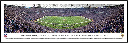 (Minnesota Vikings - 50 Yard - Finale - Blakeway Panoramas NFL Posters with Standard Frame)