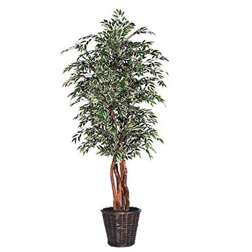 Vickerman TEX1360 Everyday Tree by Vickerman