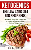 Ketogenics: The Low Carb Diet For Beginners: Heal Your Body And Turn It Into A Fat Burning Machine For Optimal Weight Loss (Ketogenic, Diabetes, Increased Energy, Mental Clarity, Low Carb High Fat)