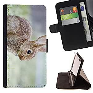 King Air - Premium PU Leather Wallet Case with Card Slots, Cash Compartment and Detachable Wrist Strap FOR Apple Iphone 5C- Rabbit Cute