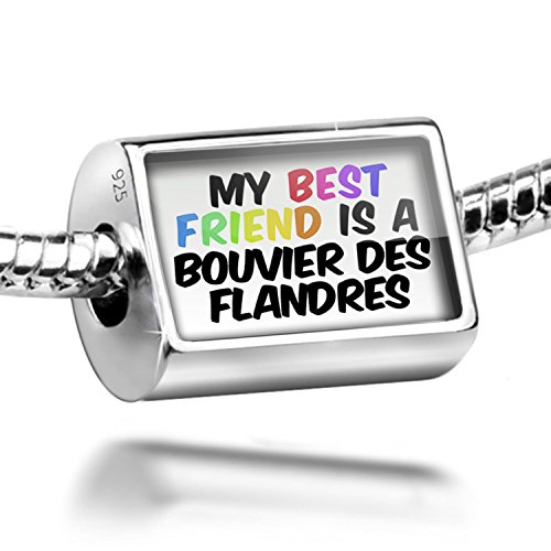 Sterling Silver Charm My best Friend a Bouvier des Flandres Dog from Belgium - ()