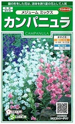 サカタのタネ カンパニュラ メジューム ミックス