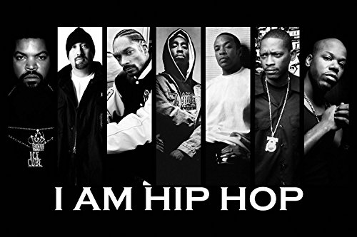 Hip Hop Rap Ice Cube Snoop Dogg Tupac Shakur Dr Dre Black White Silk Poster 36X24 Inches