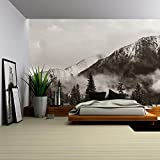wall26 - Banff national park view panorama with foggy mountains and forest in Canada. - Removable Wall Mural | Self-adhesive Large Wallpaper - 100x144 inches