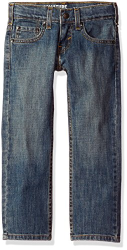 Signature by Levi Strauss & Co. Gold Label Big Boys' Relaxed Fit Jeans, Bridge, 10 ()