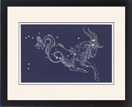 Framed Print of Capricorn by Prints Prints Prints