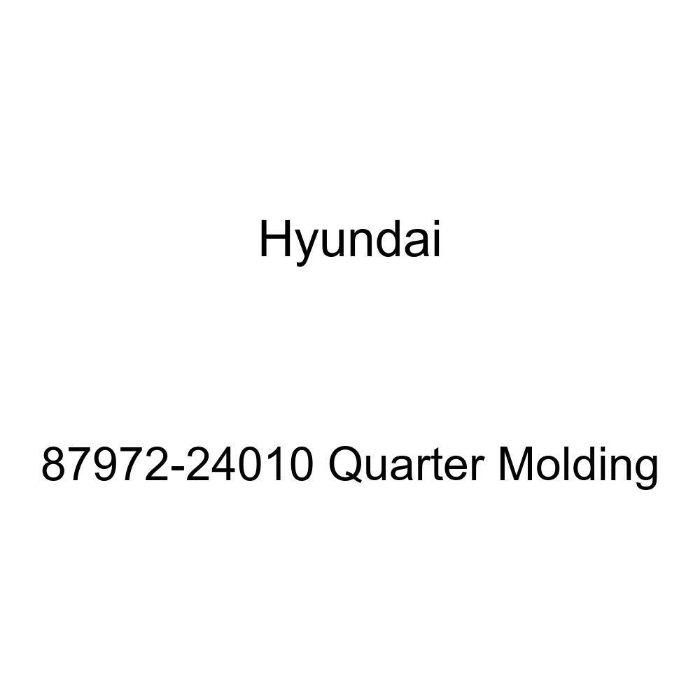 Genuine Hyundai 87972-24010 Quarter Molding
