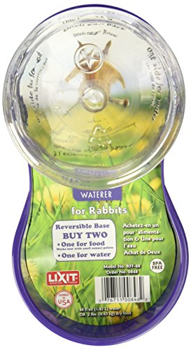 Lixit-Animal-Care-Rabbit-FeederWater-Fountain-48-Ounce