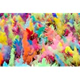 GnG Premium Quality HOLI Colors - 12 Lbs (6 colors X 2lbs Ea color) RED, YELLOW, PINK, BLUE, GREEN, AND PURPLE - SHIPS FROM USA
