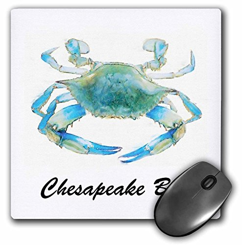 3dRose 8 x 8 x 0.25 Inches Mouse Pad, Chesapeake Bay Blue Crab Maryland ()
