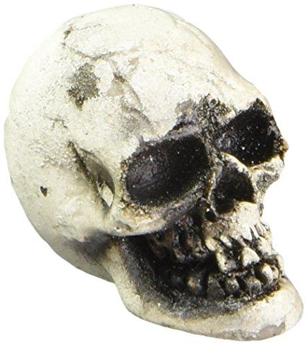 [Set of 5 Fairy Garden Skulls Faerie Halloween] (Halloween Decor For Home)